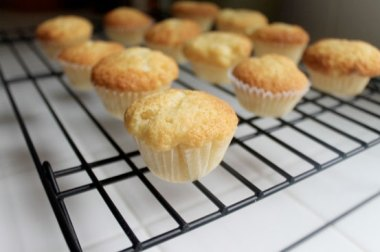 very vanilla cupcakes a la frugal foodie family